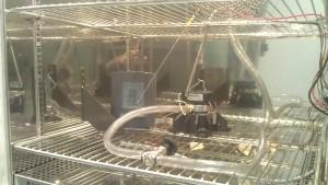 Termoigrometro domestico